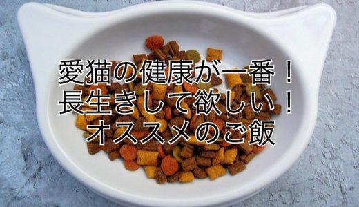 猫を飼う時にオススメの餌はコレ!かかりつけ獣医師推奨のご飯で安心!